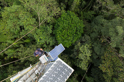 A high 48m tower used to collected data about the CO2 and O2 levels. Tropical rainforest, Barro Colorado Island, Gatun Lake, ...