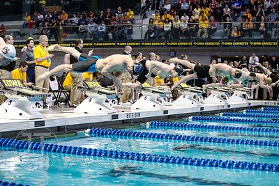 NCAA Men's Swimming Championships