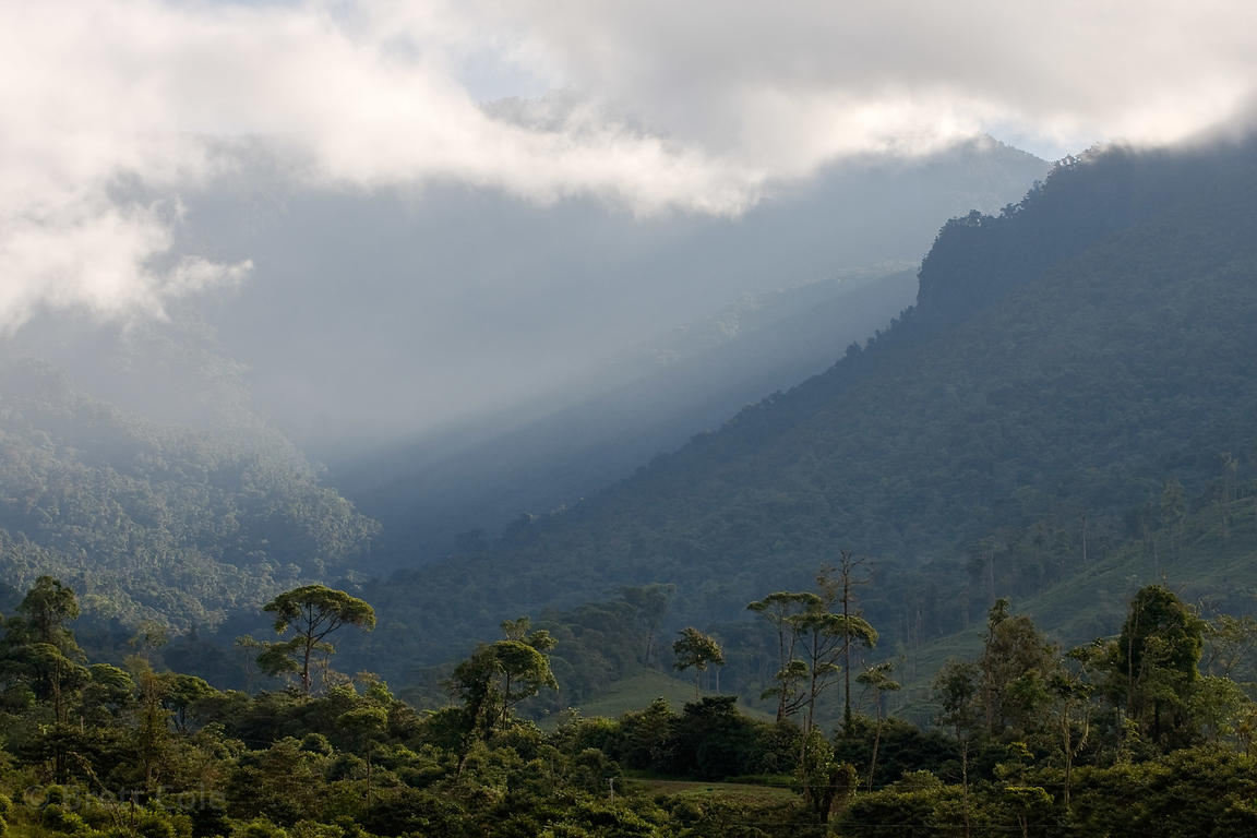 Distant view of the Las Nubes Reserve, Costa Rica