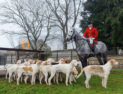 Huntsman Andrew Osborne MFH with the Cottesmore hounds