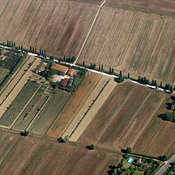 Farm and Crop Fields, Pisa