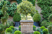 Walled garden designed by the late Graham Hopewell includes an ante-chamber featuring evergreen shrubs such as standard holly...