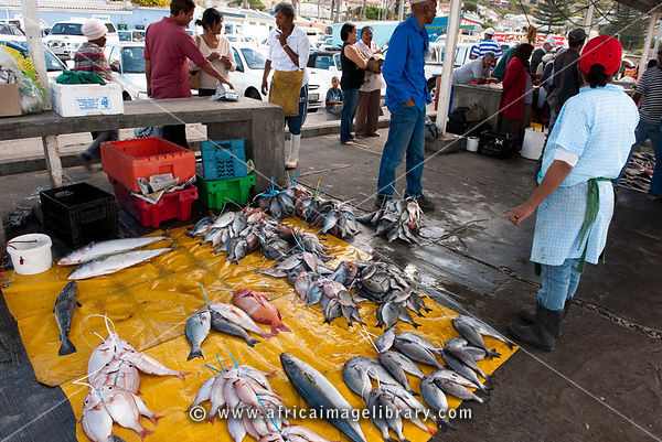 Fish market, Kalk Bay, False Bay, South Africa