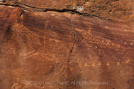 Petroglyphs with Fine Interior Lines Nine Mile Canyon
