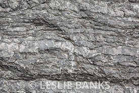 Grey Stone Background Texture