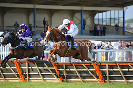 6.30pm The Selling Handicap Hurdle Race (Class 5) - 25th June 2013