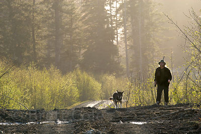 A forest activist and his dog survey logging in the Chugach National Forest, Alaska
