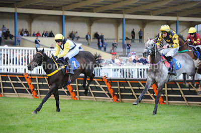 7.35pm The Handicap Hurdle Race (Class 3) - 25th June 2013
