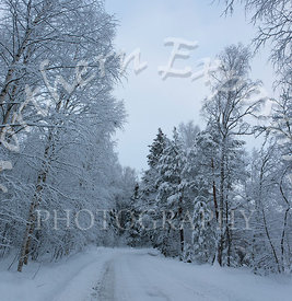 Snowy_Espoo_Lane-Edit