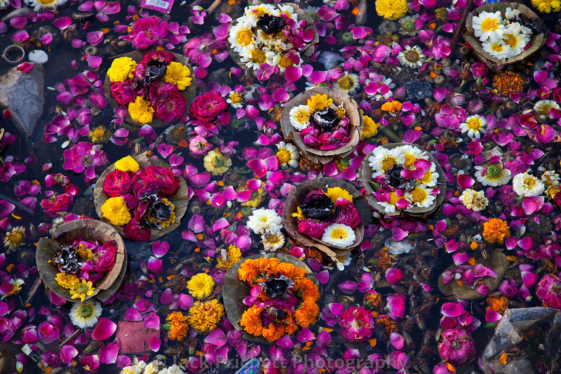 Flower offerings  at the Ganges