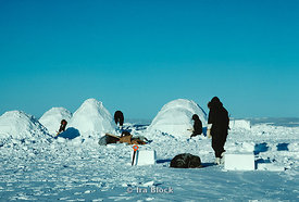 Canadian Arctic Survival Training