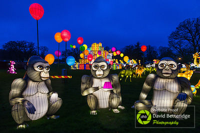 Longleat_Festival_of_Light-34