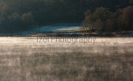 Wooded Shore on Loch Eil - Landscape Photography