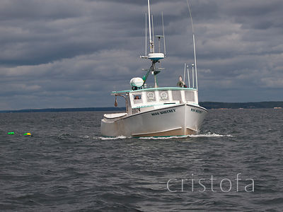 a lobster boat off the Maine coast