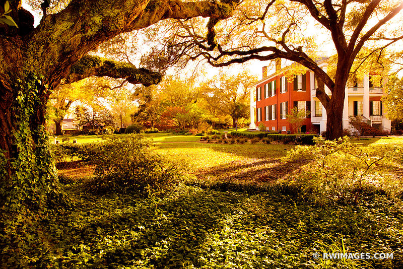 NATCHEZ MISSISSIPPI SOUTHERN ARCHITECTURE AMERICAN SOUTH