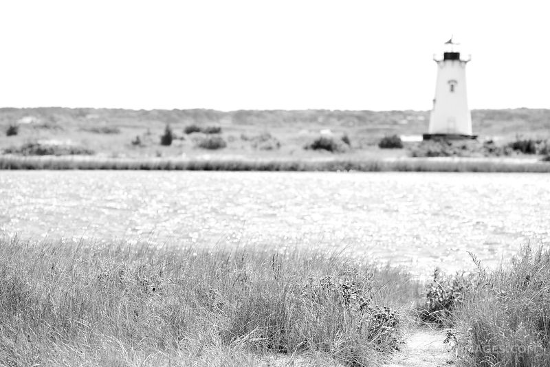 EDGARTOWN LIGHTHOUSE EDGARTOWN MARTHA'S VINEYARD BLACK AND WHITE