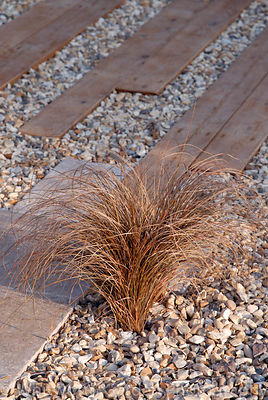 Carex flagellifera planted in gravel with wooden and stone paving in 'The Homebase Living Room' garden at the RHS Hampton Cou...