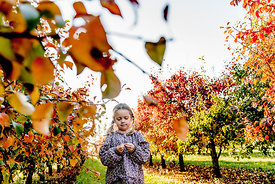 Younger Nordic girl and pear trees 15