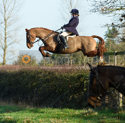 The Cottesmore at Hill Top Farm 11/12