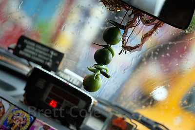 Limes and chilis (Hindu good luck charms) hang from a taxi drivers rear-view mirror, Kalighat, Kolkata, India