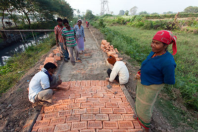 Workers build a brick path through crop fields near the town of Bantala, East Kolkata Wetlands, Kolkata, India.