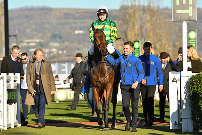 Palmers_Hill_winners_enclosure_18112018