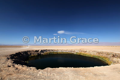 One of the two Ojos del Salar, freshwater pools in the Salar de Atacama salt pan, Region ll Antofagasta, Chile