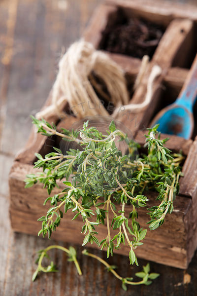 Bunch of fresh thyme in wooden box