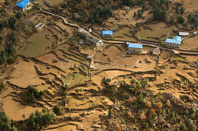 Aerial view of houses surrounded by terraced fields, Himalayan foothills, Nepal, December 2007