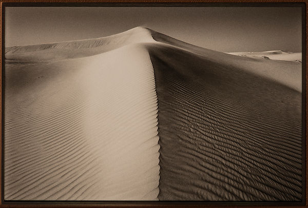 'Empty Quarter' Arabian Peninsula 1998 : Photographer: Neil Emmerson: £975 including UK VAT.