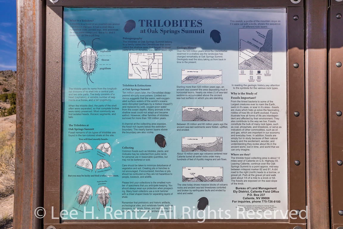 Interpretive Sign for Tribote Fossil Collecting Area in Nevada