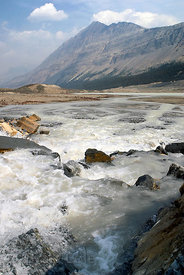 Glacially charged waters roaring into the Athabasca River. Jasper NP, Canadian Rockies.