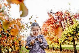 Younger Nordic girl and pear trees 12