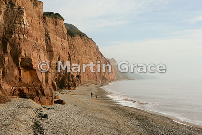 Cliffs  below Salcombe Hill, Sidmouth, Devon, England