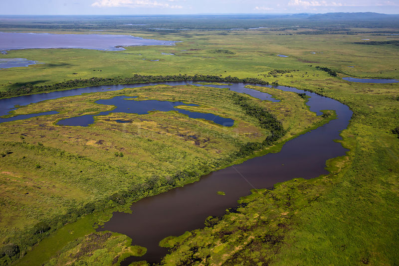 Aerial view of the Pantanal, end of the dry season. Near the Rio Paraguay or Paraguay river, Brazil. November 2017.