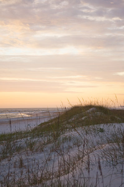 008-Eastern_Landscapes_D105077_Sand_Dunes_on_the_Beach_-_Preview