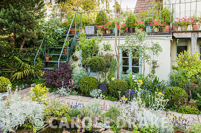 Formal pond surrounded by helichrysum and lavender with balcony full of potted plants above including red pelargoniums. Eastf...