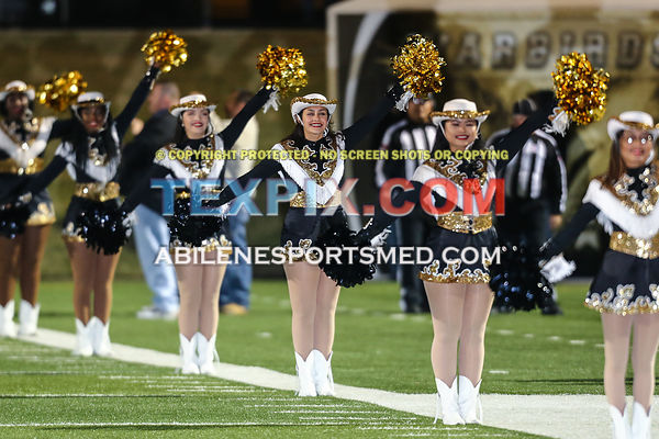 11-10-17_FB_Timber_Creek_v_AHS_TS-468