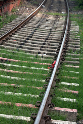 Grass grows over railway tracks in Sovabazar, Kolkata, India.