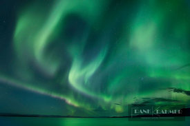 Polar light (Aurora Borealis) at ocean - Europe, Iceland, Western Region, Snaefellsness, Bogarnes - digital