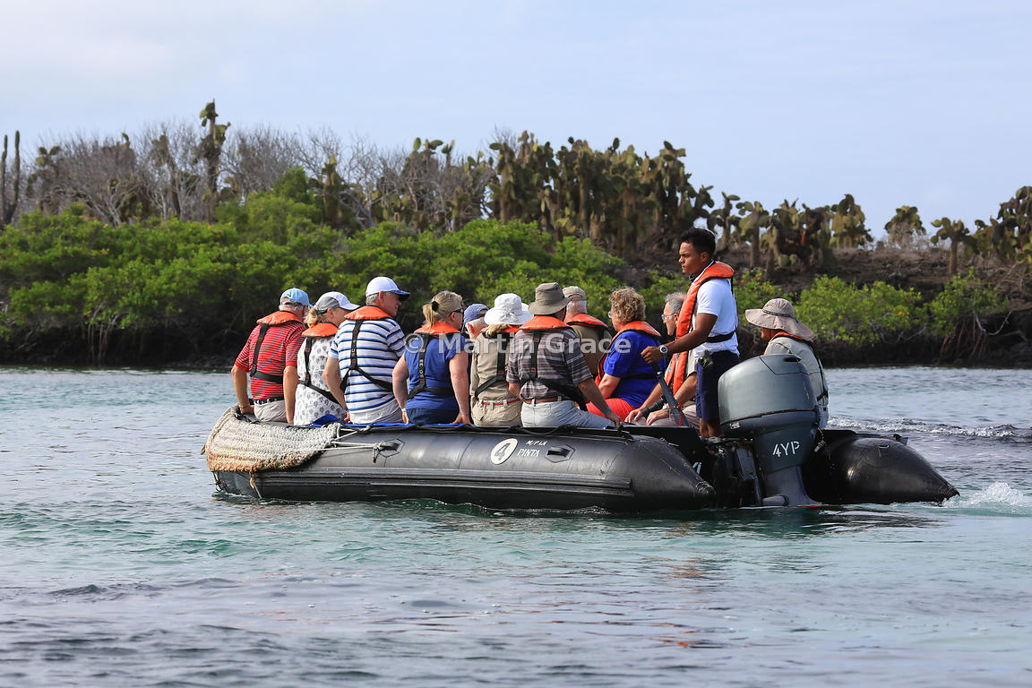 Tourists enjoying a Zodiac cruise, Bahia Ballena, Santa Cruz, Galapagos