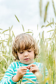 Little Danish girl in grain field 2