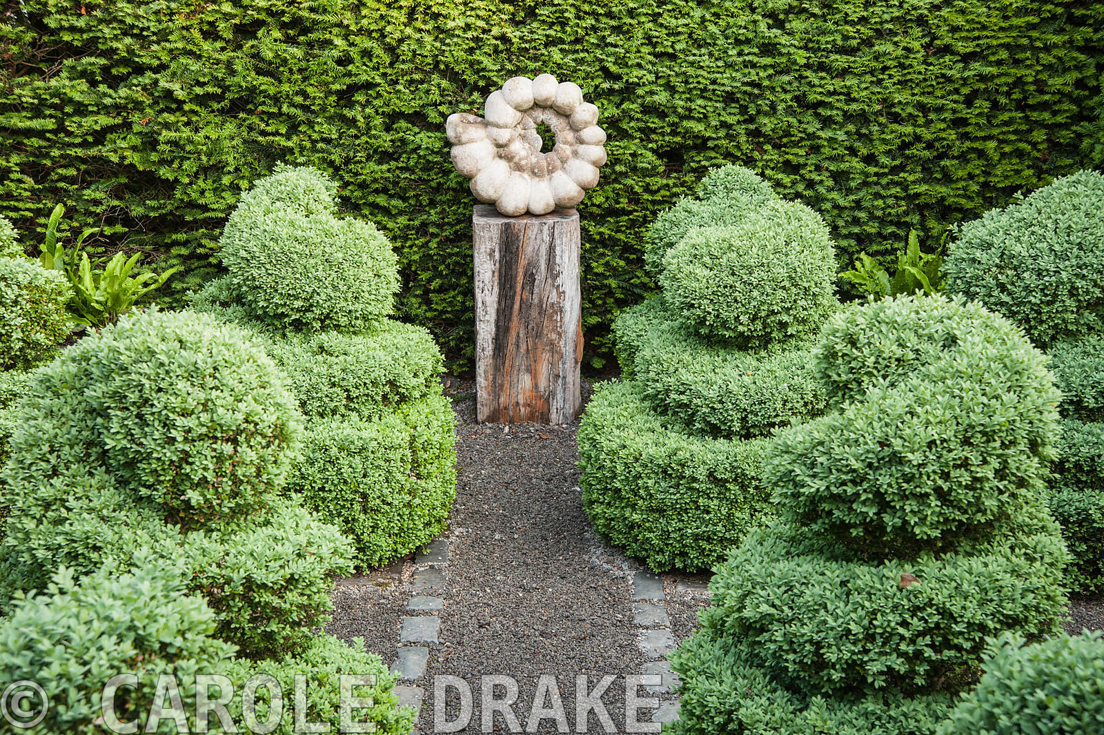 Ammonite sculpture by Darren Yeadon surrounded by box topiary, set within yew hedges. Tony Ridler's Garden, Cockett, Swansea, UK