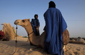 Tuareg packing a camel to prepare for a trip in the Sahara desert, outside Timbuktu, Mali