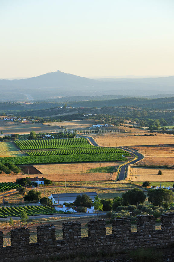 The vast plains of Alentejo seen from the walled city of Estremoz.The castle of Évoramonte on the horizon. Portugal