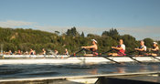 Taken during the World Masters Games - Rowing, Lake Karapiro, Cambridge, New Zealand; ©  Rob Bristow; Frame 1296 - Taken on: ...