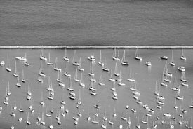 SAILBOATS MONROE HARBOR LAKE MICHIGAN CHICAGO BLACK AND WHITE