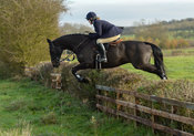Kelly Morgan jumping a hedge on Deane Bank