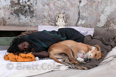 A homeless man and a street dog sleep on the street in Pushkar, Rajasthan, India