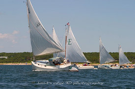 The start of the Squeteague harbor catboat rendezvous, a summer event of the Catboat Association.